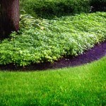 Lawn Care Huntley IL