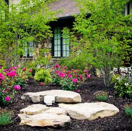Landscape Design & Build